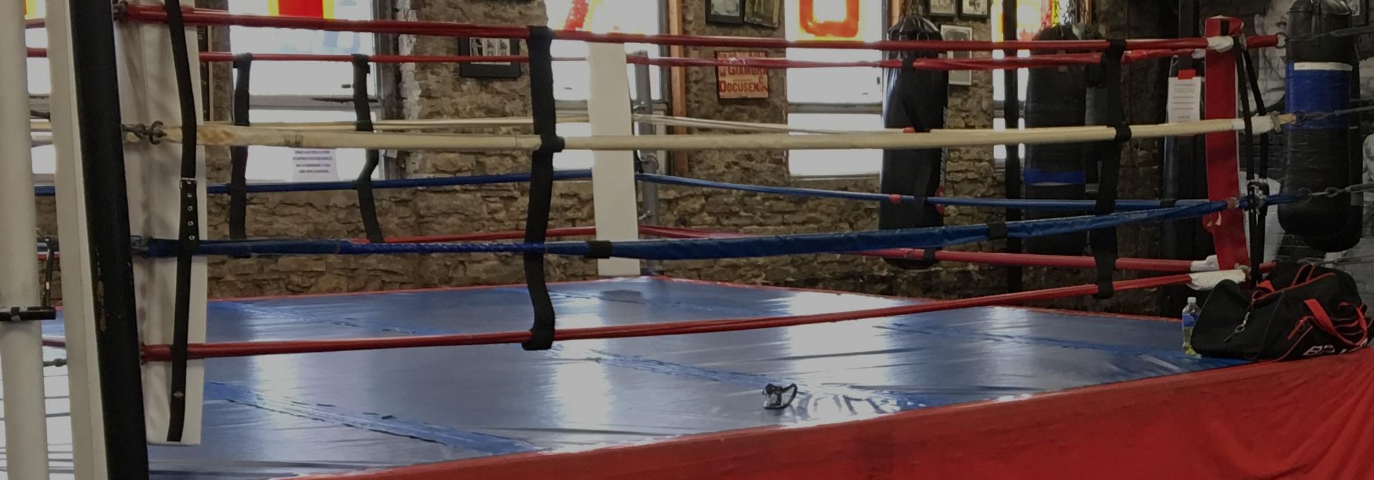 Business Member Spotlight – Bloor Street Fitness & Boxing